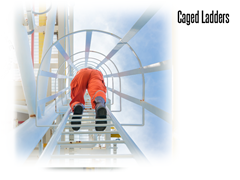 Cage ladders will help keep your employees safe and your company up with OSHA fall protection regulations.