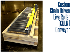 The custom CDLR conveyor shown at the manufacturing plant, ready for installation.